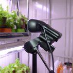 webカメラ利用