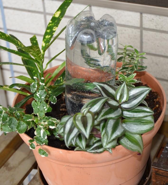 SIMERUS水やりテープ 標準型 観葉植栽