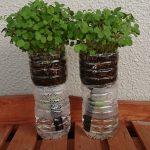 SIMERUS水やりテープの底面給水 ペットボトル植木鉢