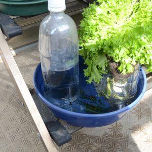 底面潅水水量増強