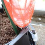 大きなペットボトルによるSIMERUS水やりテープ(タレ瓶活用型)による給水器 埋設法
