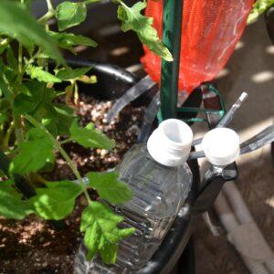 大きなペットボトルによるSIMERUS水やりテープ(タレ瓶活用型)の給水器への土被せ