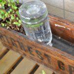 楽々底面給水シート 水面を設定しないタイプ 植生セット